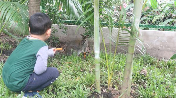ホーチミン:サイゴン動植物園で...